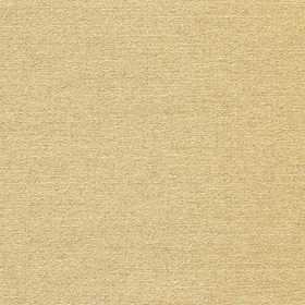 ЖЕМЧУГ 3465 золотистый 200 см